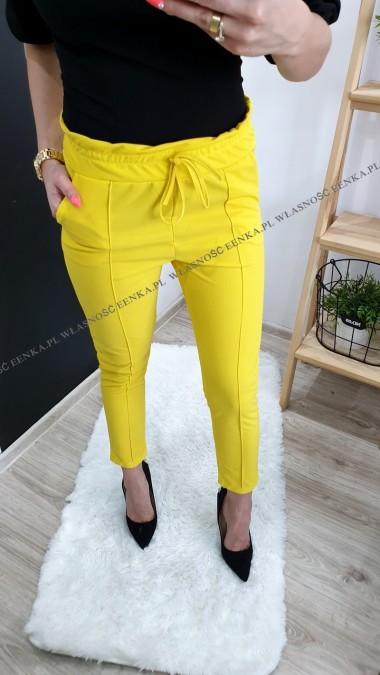 Spodnie Wysoki Stan 3 kolory
